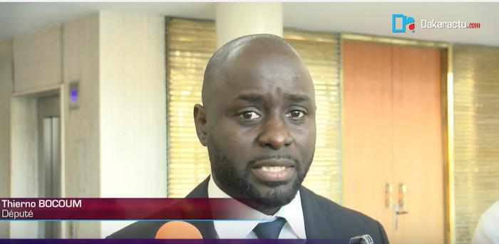 Députés de la diaspora : Ce que la loi prévoit; ce que la politique dissimule (Par Thierno Bocoum)