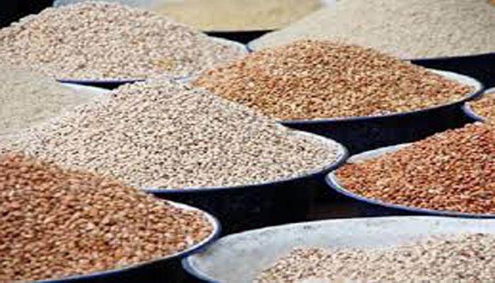 Agriculture-Alimentation: La région de Fatick peut couvrir 91% de ses besoins céréaliers(DRDR)