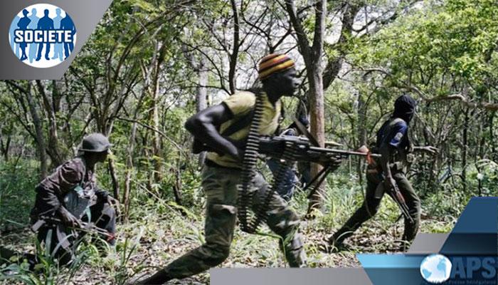 Diouloulou: Des touristes européens violentés par des porteurs d'armes(Source sécuritaire)