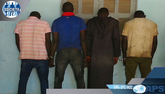 Sécurité: Quatre membres d'une bande de malfaiteursarrêtés à Foundiougne(Gendarmerie)