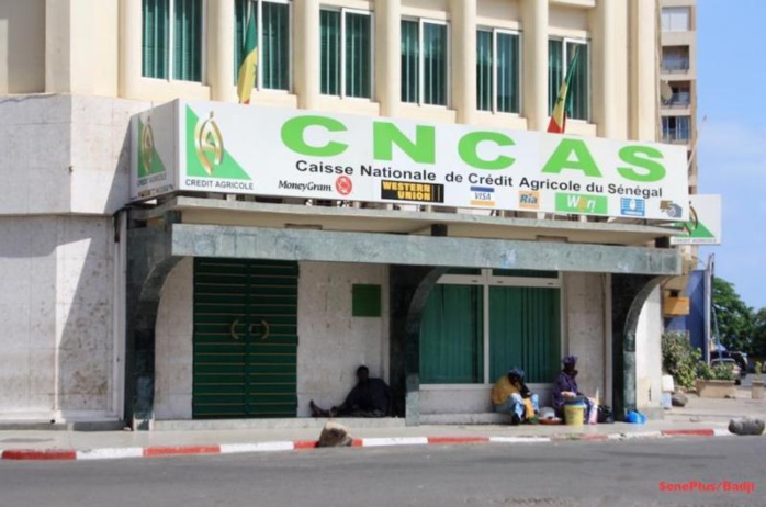 Assurances: La CNAAS va porter son capital à 5 milliards (PCA)