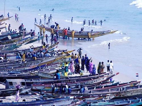 Hausse de plus de 61 % sur le budget du ministère de la Pêche