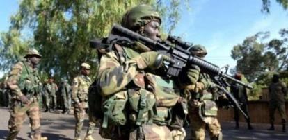 Sécurisation du Sud : les opérations de l'Armée vues de la Casamance