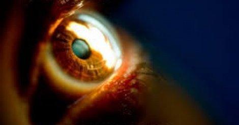 Un ophtalmologue dénonce l'intervention des tradipraticiens dans les médias