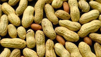 Commerce: Vers la production de 200 mille tonnes d'huile d'arachide par an (MINISTRE)
