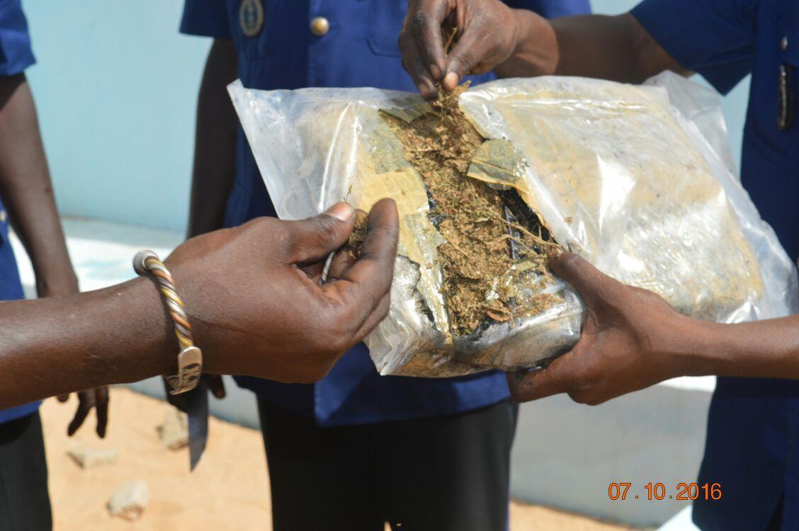 Arrêté avec 26 kg de chanvre indien : Ibrahima Sy risque 15 ans de travaux forcés et une amende de 10 millions