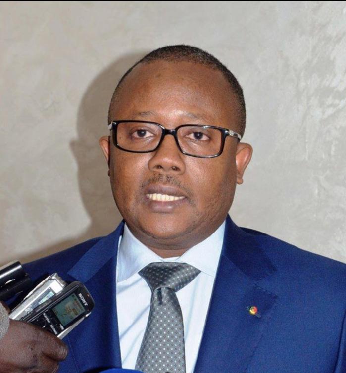 Guinée Bissau : À la découverte des réseaux français et africains du président déclaré élu.