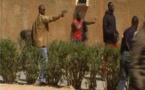 Affaire Ndiaga Diouf: Barthélémy Dias prêt à démisionner de l'Assemblée nationale