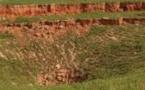 """Audio- Incroyable un champ d'arachide détruit par un """" tremblement de terre """" au Sénégal…."""