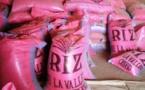 """Agriculture: Le riz local baptisé """"Moss Doli"""" (Ministre)"""