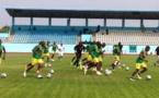 Séance d'entraînement des Lions avant Sénégal - Zimbabwe