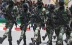 Sécurité : le Sénégal bientôt premier contributeur de troupes de la Minusma (Macron)