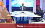 Décryptage avec Pape Alé Niang - Contrats pétroliers : enjeux et défis pour le Sénégal
