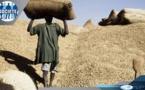 Agriculture: Suspension de la taxe à l'exportation sur l'arachide(OFFICIEL)