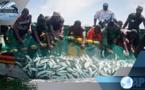 Gestion des pêches: Oumar GUÈYE veut s'inspirer du modèle américain
