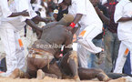 VIDEO: Balla Gaye2 commente sa victoire