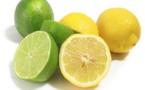 A cause du climat de l'arrêt des importations au Sénégal: Le prix du kilo de citron hausse de 500 Fcfa et devient intouchable