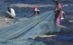 Suzanne Traoré sur la surpêche: Silence! On pille nos océans