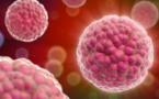 Etude: La crise de 2008 responsable d'un 1/2 million de morts par cancer?