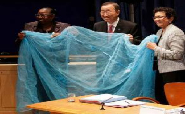 LE PALUDISME TUE ENCORE 655 000 PERSONNES:  L'Afrique perd ses enfants