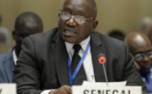 Contrats pétroliers: Les vérités de Bassirou Sène Ambasadeur du Sénégal en France