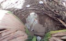 Soupçon de sabotage: Des lots de cartes biométrique trouvées dans des poubelles à Kaolack et Touba