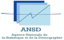 SENEGAL: Chute de la production industrielle  en juin 2017 selon l'ANSD